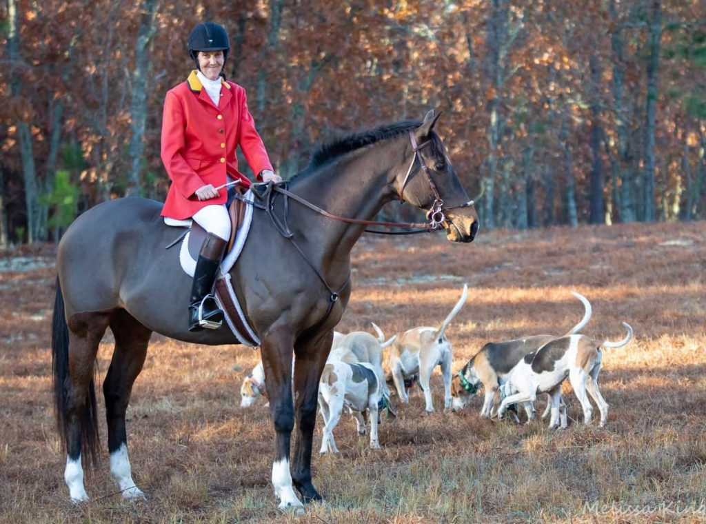 Camden Hunt member in foxhunting attire on horse with hounds